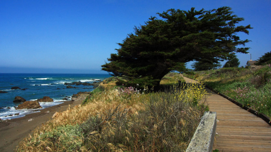 East West Ranch has the best hikes in Cambria, CA
