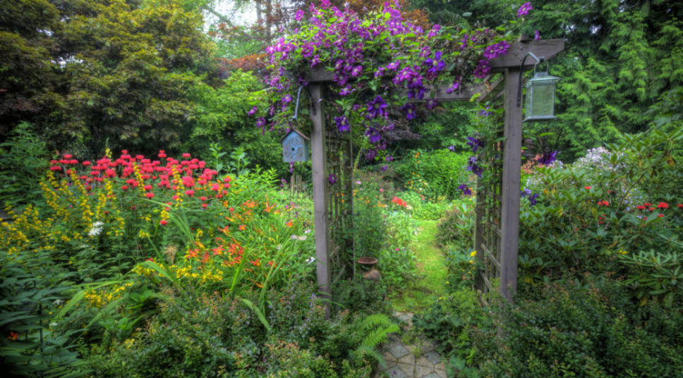 Your Summer Gardening Checklist: How to Keep the Bounty Coming all Season