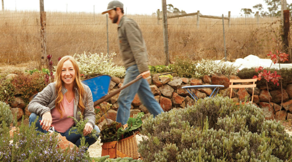 Cove to Table: Simple Seafood Recipes from Tomales Bay's Nick's Cove