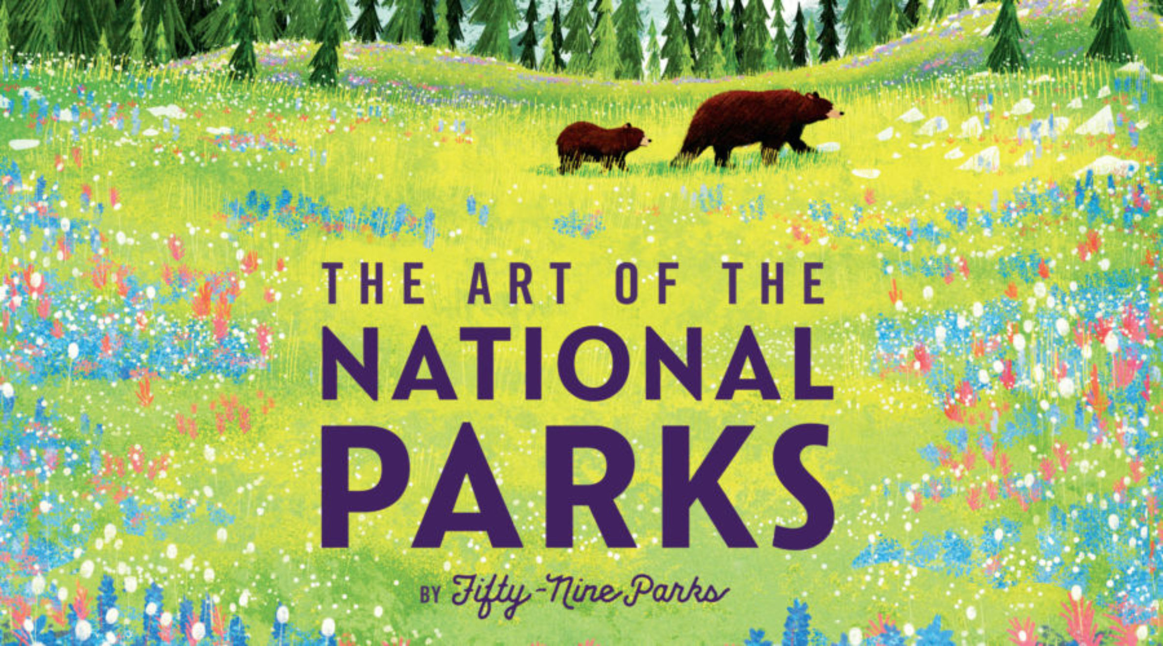 Art of National Parks Book