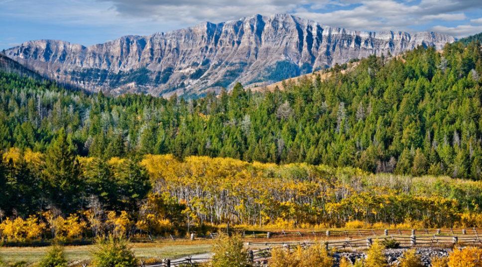 Colorado Rockies Ranch Landscape