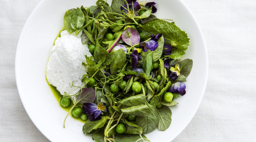 Spring Salads: Spring Greens and Peas with Ricotta and Preserved Lemon Herb Oil (0418)