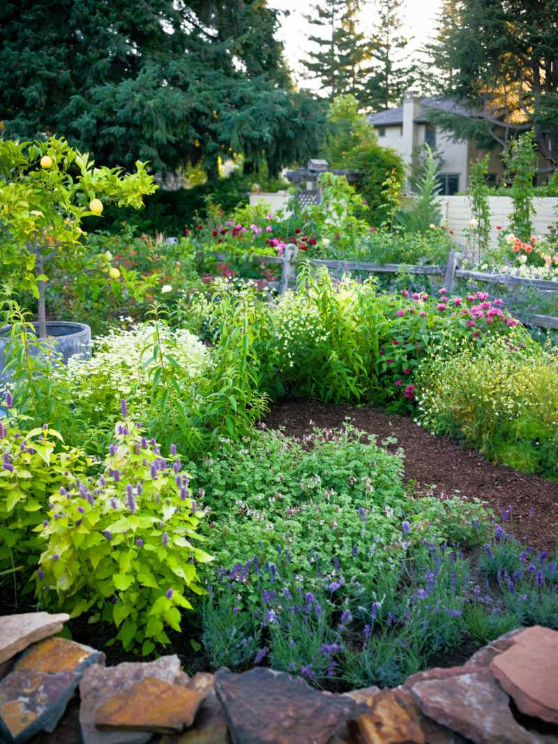 4 Easy-Care Flower Bed Ideas