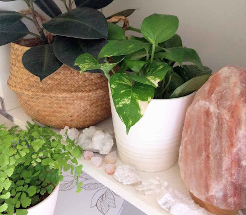 Why You Should Be Pairing Houseplants and Crystals - Sunset Magazine