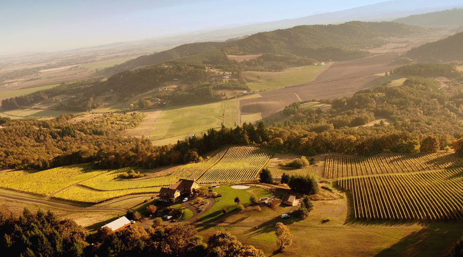 View of Oregon wine country in McMinnville AVA, one of the great Thanksgiving getaways in the West