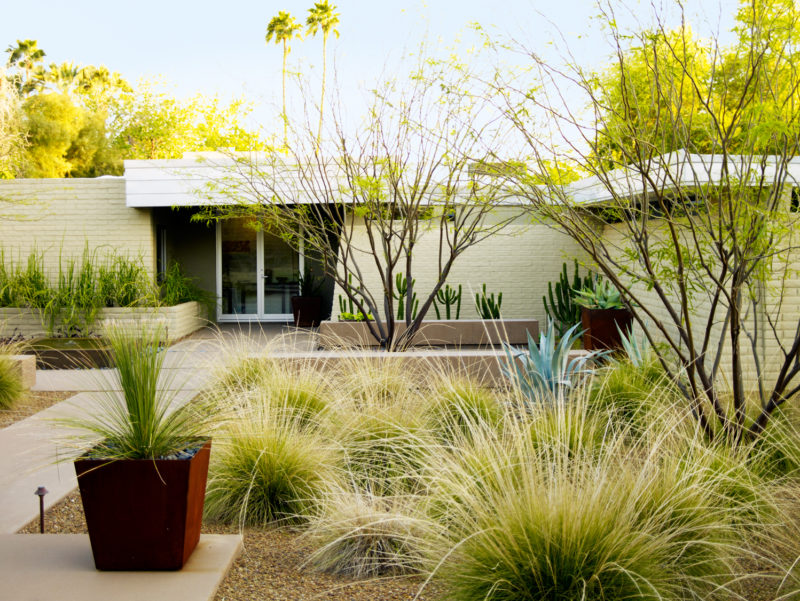 Useful strategies to adapt to the unique landscaping considerations ...