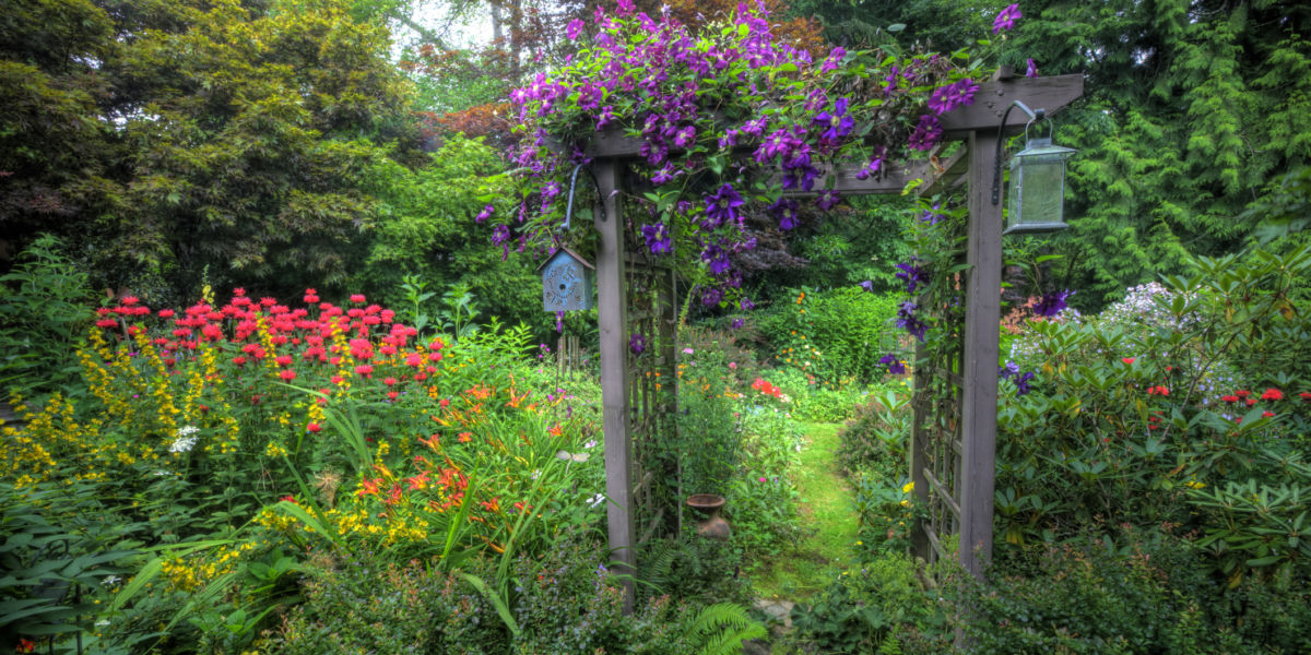Northwest garden with a variety of luscious plants and a wooden arch with lanterns and a bird feeder.