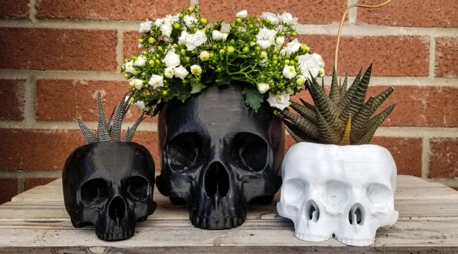The Headbanger's Ball Goes Green With These Heavy Metal Houseplants