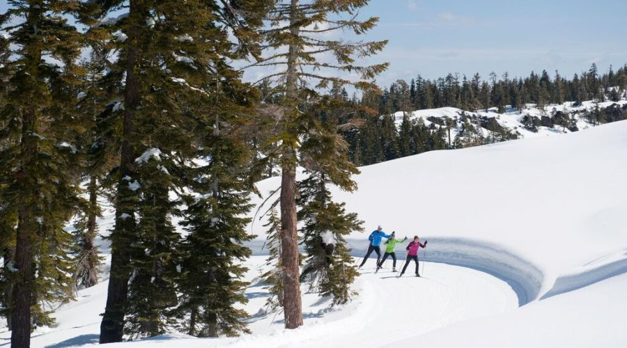 Cross-country skiing at Royal Gorge in California